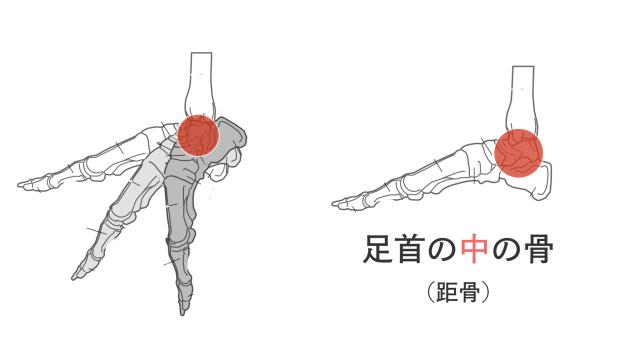 足首で動かすポイント